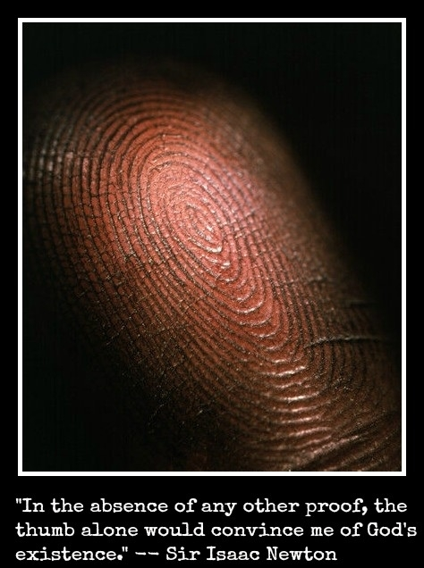"""""""In the absence of any other proof, the thumb alone would convince me of God's existence."""" Isaac Newton"""